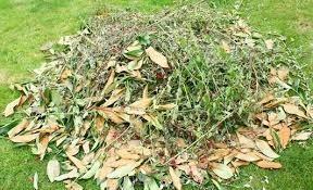 Que faire des déchets Verts - Bio Dechets Saint Germain Paysage